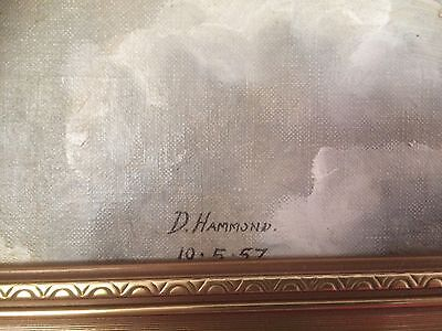 original oil painting Viscount signed By D Hammond 1957