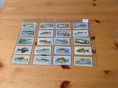 cigarette cards.Players.Freshwater Fish.Full set.Good condition. (Pink)