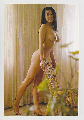 Postcard Risque Nude Sexy Pinup Girl Topless Breast Japanese , Post Card #3595