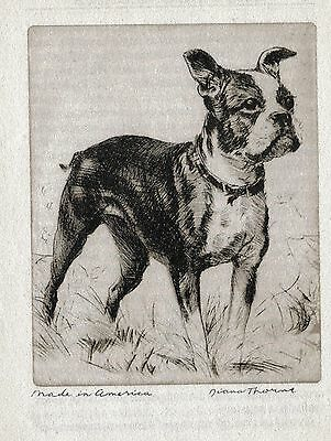 BOSTON TERRIER   Vintage Dog Print 1936 Diana Thorne MADE IN AMERICA