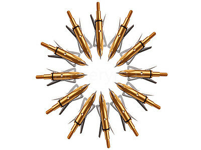 12PK Archery Hunting Arrowheads Gold 2-Blades Broadheads Fit Compound Bow