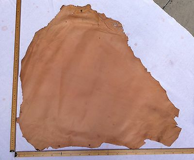 Leather Hide Skin Light Tan approx 85 x 90cm