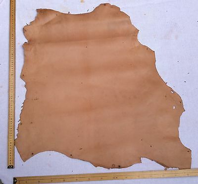 Leather Hide Skin Light Tan approx 75 X 70cm
