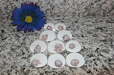 Sand Dollar Lot Of 10 Gorgeous California Central Coast With Rare Barnacles