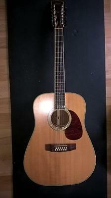 Cort Earth Series Acoustic with Pickup