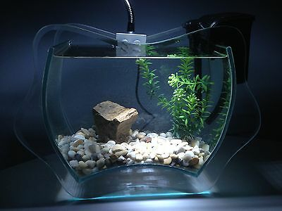 Nano Aquarium Set complet INANGA,inclus Décoration,Dekoartikel,Verre décoratif
