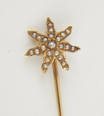 Vintage / Antique Victorian 14K Yellow Barsa Seed Pearl Stick Pin