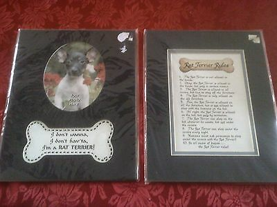 2 Rat Terrier Picture Frame Mats