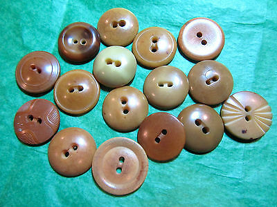 """(16)   3/4"""" BROWN TONE VEGETABLE IVORY? 2-HOLE CRAFT BUTTONS - VINTAGE Lot#L463"""