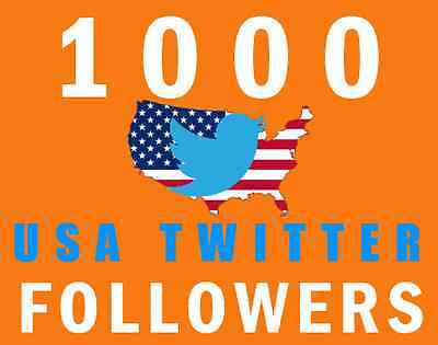 1000+ Verified USA Twitter Follower - Fast Delivery
