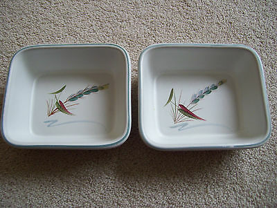 Vintage Denby Greenwheat Small Dishes x 2