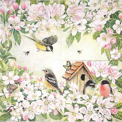 4 Single Table Party Paper Napkins for Decoupage Decopatch Craft Bird Familie