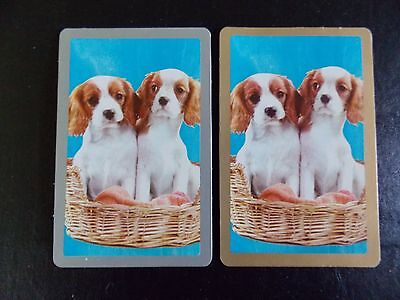 Swap playing cards 1 pair Dogs, Blank Backs, Gold, Silver  borders
