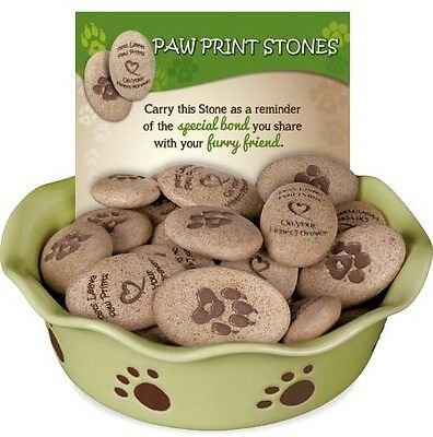 AngelStar Paw Prints Stones 48 Piece Assorted & Display