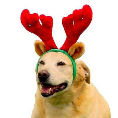 Reindeer Antlers for Dogs- Free Shipping