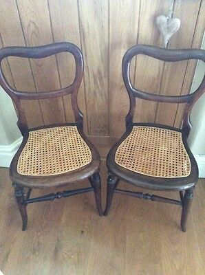 2 Antique Balloon Back Cane Seat Chairs