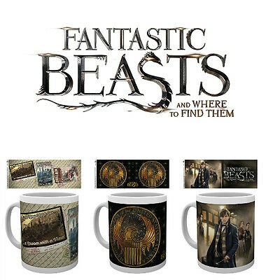 Official Fantastic Beasts and Where to Find Them BOXED MUG Gift Newt MACUSA NEW