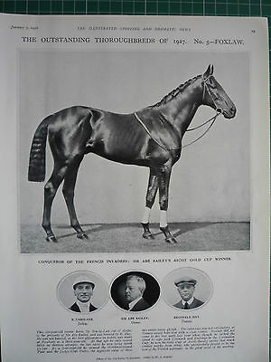 "Outstanding Thoroughbreds Of 1927 "" Foxlaw."" 1928"