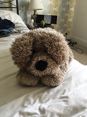 Small Soft Dog Toy
