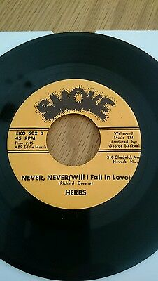 NORTHERN SOUL = THE HERBS = NEVER, NEVER WILL I FALL IN LOVE on SMOKE RECORDS.