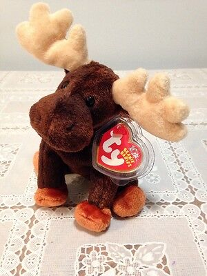 Ty Beanie Baby Zeus The Moose