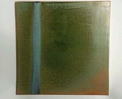 """Hartley Woodside Pottery Craiglieth 12""""x12"""" Hi Fired Tile Amazing Colors Signed"""