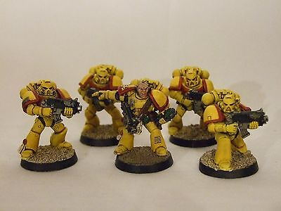 Warhammer, 40K, Space Marine, Tactical Squad, Imperial Fists, Painted
