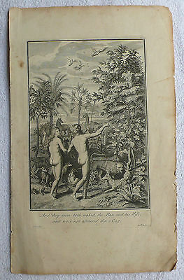 Adam & Eve, Bible; And They Were Both Naked, Antique Print (18th century)