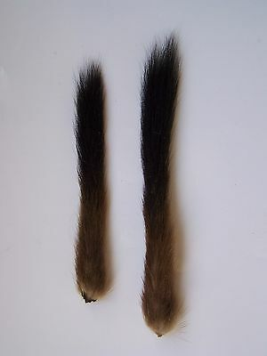 2 Stoat tails. Fly tying, crafts.