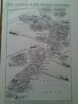 Map of Growing Industries of New Zealand 1924 Single Page Ideal to Frame
