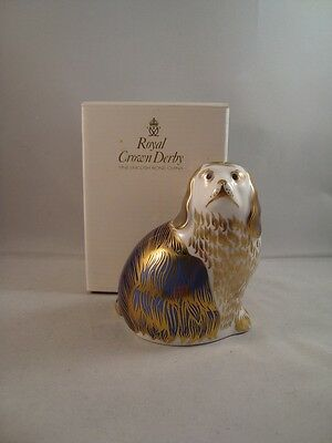 Royal Crown Derby King Charles Spaniel Paperweight 1st Quality Boxed