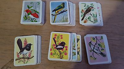 100 Vintage Collectable Tuckfields Australiana Bird Series Trading Cards