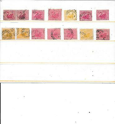 Western Australia cancels swans  better lot   nice  7 mostly DXPO