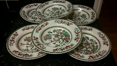 """6 x Johnson brothers Indian tree 8 3/4"""" rimmed bowls"""