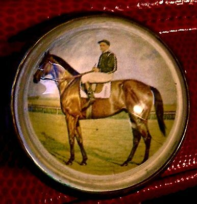 Beautiful TB Race Horse, Domed Glass Horse  Bridle Rosette