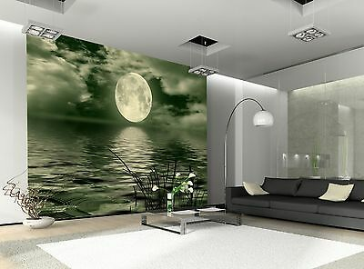 Full Moon  Wall Mural Photo Wallpaper GIANT DECOR Paper Poster Free Paste