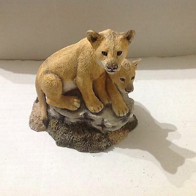Sherratt and Simpson, Like BFA 56851 Lions Young Two on Rock