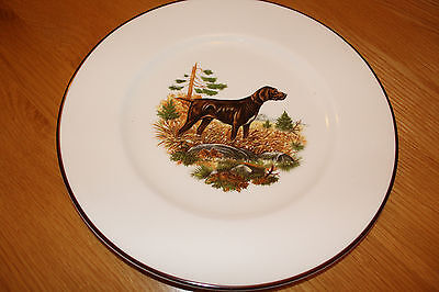 German Short Haired Pointer On Staffordshire Crown Plate