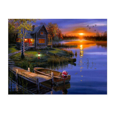 New DIY 5D Diamond Painting Embroidery Cross Stitch Kit Craft Home Decor 40*50cm