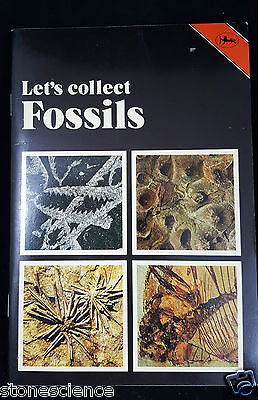 Lets Collect Fossils GC Paperback Superb illustrations, a beginers book