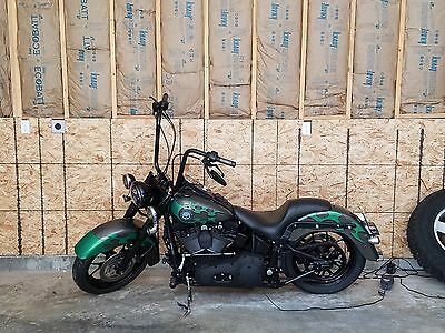 2004 Harley-Davidson Softail  Custom 2004 Harley-Davidson Softail with Low Miles and 1 owner