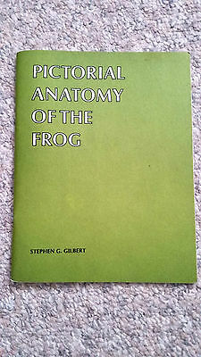 Pictorial Anatomy of the Frog by Stephen G. Gilbert (8th print 1981, Paperback)