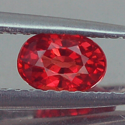 Exceptional Vvs Aa Oval Vivid Fiery Red Ruby Natural