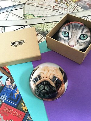 Pug dog and tabby cat paperweights