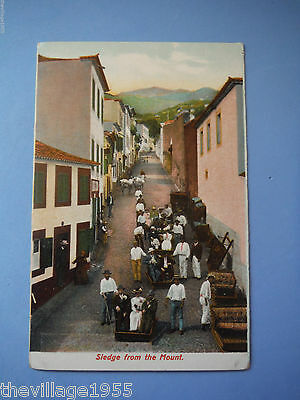 Vintage Postcard / Sledge from the Mount / Madeira / Portugal