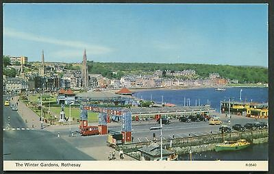 BUTE - ROTHESAY 1960s POSTCARD - THE WINTER GARDENS - DENNIS No.0540
