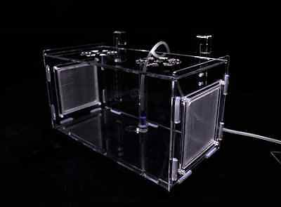 NEW Breeder Internal Breeding Box 20x10 cm for Shrimp & Fish
