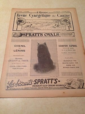 Vintage French Magazine with Brussels Griffon Ch. Caporal - 1931