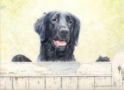 """First Impressions"" A Limited Edition Flat Coated Retriever Print"