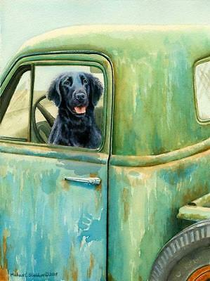 Excursion, A Limited Edition Flat Coated Retriever Print